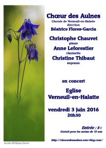 affiche CDA Verneuil 030516